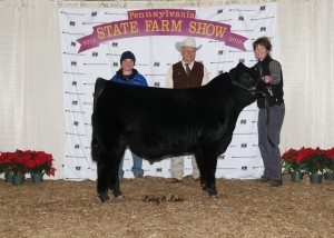 All Other Purebreds Reserve Grand Champion Bull -- PVSM Smooth Mooves, owned by PSA member Laurie Meyers, Powell's Valley Simmentals, Halifax, PA,  on Friday, January 9th, at the 99th Pennsylvania Farm Show.