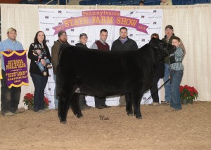 Junior Champion AOB Heifer and Supreme Champion Beef Female of the Junior Breeding Beef Show -- TJSC Diamond 1A, exhibited by Jackson Mattocks of Guys Mills, Crawford Co. on Sunday, Jan. 11, at the 99th Pennsylvania Farm Show in Harrisburg. (L-R): Alex Mattocks, Sarah London, Connon London, Darrin Lyle, Ashley Rodeheaver, judge Chris Cassady, judge Chris Mackey, James Campbell, Jackie Campbell and Jackson Mattocks