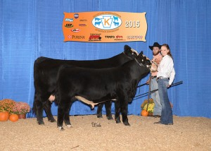 Champion SimGenetics Cow/Calf -- KFREYS ARKPRIDE CHANEL owned by Freddy Frey, Frey Family Angus, Drumore, PA