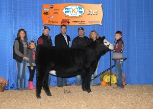 Reserve Grand Champion SimGenetics Female -- Miss WL Maxie B owned by Tyson Woodard, Cambridge, OH