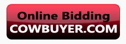 online_bidding_button_sidebar
